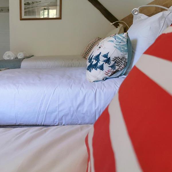 Chambre Max & Leon - Chambres d'hôtes Anjou Val de Loire - Quatre chats sous un pin